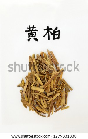 Amur cork tree bark herb used in chinese herbal medicine, anti bacterial, anti microbial & anti inflammatory. On rice paper with calligraphy script, translation reads as amur cork tree. Huang bai.  #1279331830