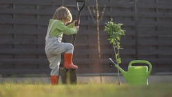 Amusing blond hair little child dig with big hoe, planting time, boy with rubber