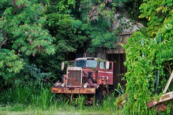 An abandoned diesel truck rusting away out side a barn.