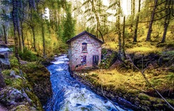 An abandoned house by a forest stream. Witch house in autumn mossy foresdt at river stream. Forest house at river stream. Abandoned house at forest river stream