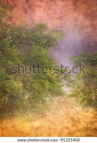 An abstract background with trees and other natural textures. - stock photo