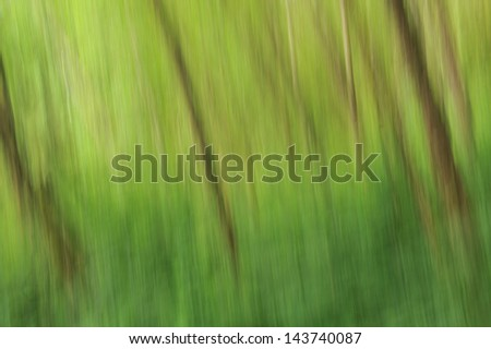 An abstract forest of trees with a green gradient