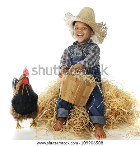 An adorable biracial farm boy holding a basketful of eggs while sitting on a hay stack, a rooster standing nearby.  On a white background. - stock photo