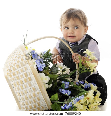 An adorable dressed-up baby boy looking sheepish as he tips over a basket full of spring flowers.  Isolated on white.