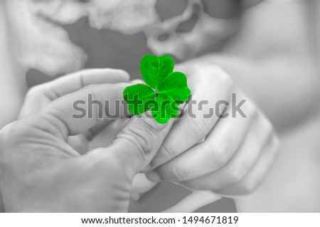 An adult gives the child a four leaf clover. Arms. The symbol of good luck. Good luck wish concept #1494671819