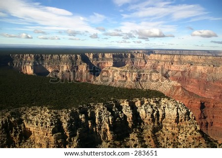 An aerial view, from onboard a flightseeing tour, of the Grand Canyon and forest covered plain.
