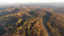 An aerial view of a curvy highway through the golden forest at fall