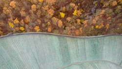 An aerial view of a curvy highway through the golden woodland and a field at fall