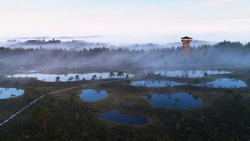 An aerial view of beautiful bog in Estonian nature during foggy sunrise with a watching tower and wooden hiking trail, Northern Europe.