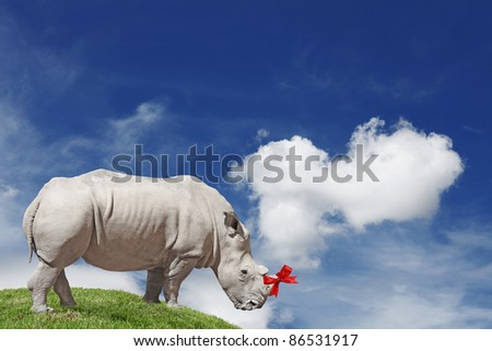 An African White Rhinoceros with a red ribbon bow tied around its horn while standing on a green grassy hill overlooking a blue cloudy sky.