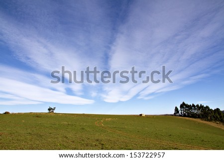 An almost empty field in rural South Africa against a dramatic blue sky. - stock photo