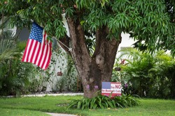an american flag hanging from a tree
