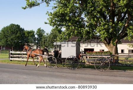 An Amish carriage pulling a cart filled with flower plants in rural Lancaster County,Pennsylvania.