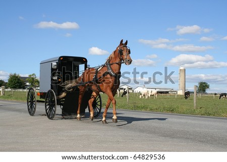 An Amish Horse Drawn  Carriage in Lancaster County, Pennsylvania