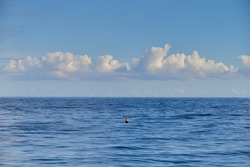 an anchor buoy in the middle of the sea