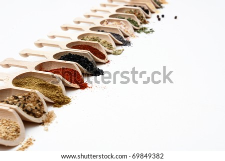 An angled view of spices in a row and isolated on white with room for copy.