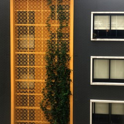 An apartment block with a bright yellow decorative privacy screen with foliage growing up the screen. Also pictured is a grey brick wall and windows