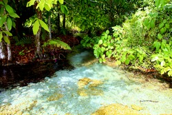 An aquamarine water of the pull in the tropical forest.