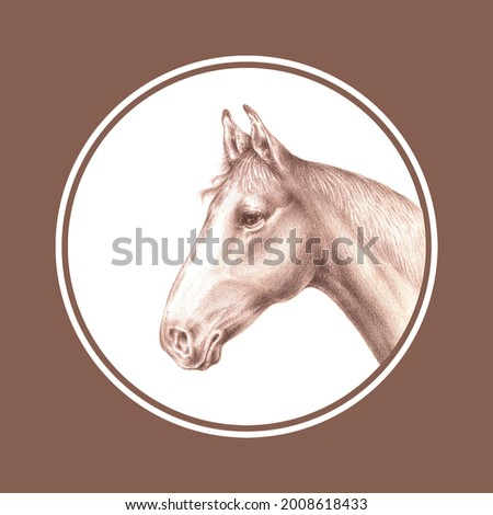An aquarelle pencil artistic hand drawn image of a brown horse half-face (head and neck) inscribed in a circle with a real aquarelle paper texture on a white background for design of text,labels,cards Stock photo ©