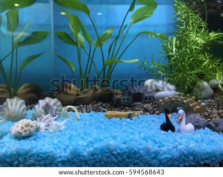 an aquarium,  fish tank with miniature and plants for its decoration