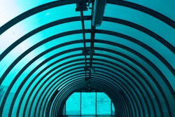 An arched tunnel across the road. Inside the overhead passage above the track. Blue light through the plastic of which the tunnel is made. A repeating element.
