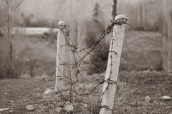 An area surrounded by barbed wire. Barbed wires rusted and concrete posts try to stand the test of time