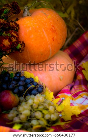 an arrangement of autumn fruits - grapes, apples, vegetables and pumpkins #660430177