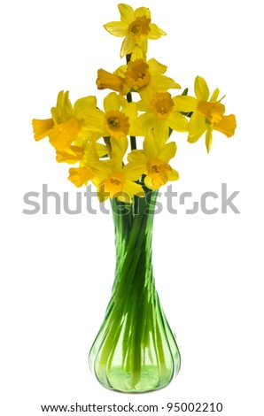 An arrangement of blooming daffodils in a green glass vase
