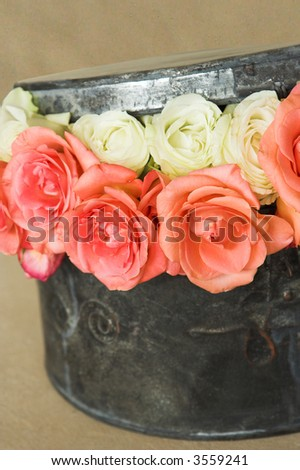 An arrangement of roses in a round metal hat box. The image is on a natural colored background. There are 2 rows of colored roses and they are peeping out of the box