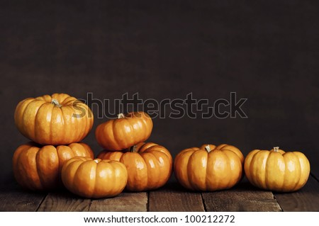 An Artistic, Dramatic Closeup of Small Pumpkins in a Line Sitting on Rustic Old Wooden Boards with Copy Space