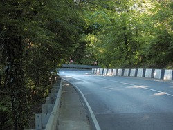 An asphalt road surrounded by deciduous forest and hills. Mountain serpentine