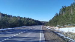 An asphalt road with markings runs through the forest, and on the roadsides there are still remnants of snow melting under the spring sun.