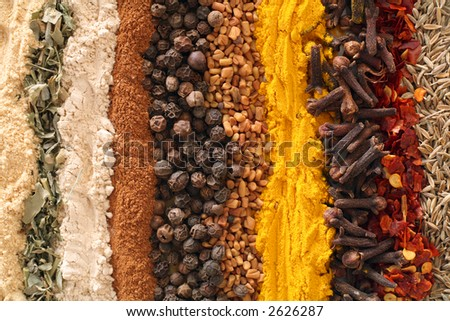 An assortment of spices used in curries. From left: ginger, methi (fenugreek leaves), garlic powder, cinnamon, black pepper, fenugreek seeds, turmeric, cloves, crushed chilies, cumin seeds.