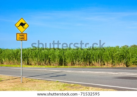 An Australian kangaroo warning sign on the side of a road