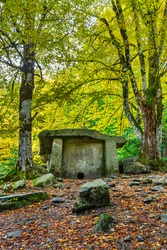 An autumn forest with a dolmen under trees. An old ancient megalithic tomb in the Caucasus mountains in Russia.
