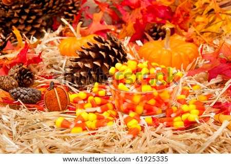 An Autumn holiday theme with pumpkins, corn, pine cones, autumn leaves and candy on a hay base with focus on the candy.