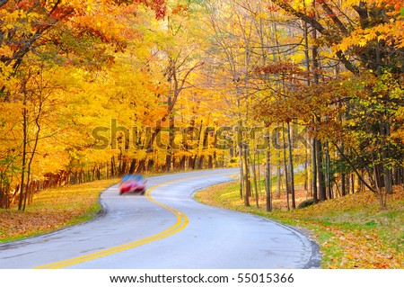 An autumn road with a motion-blurred car on the curve
