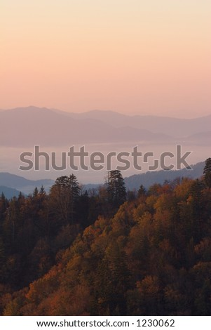 An autumn sunrise above the clouds of the Smoky Mountains Nat. Park, USA.