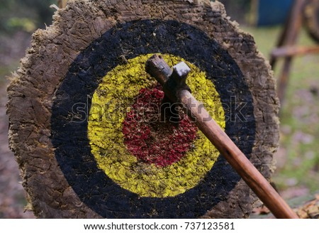 An axe sticks in the middle of the bullseye on an handmade target made from a log.