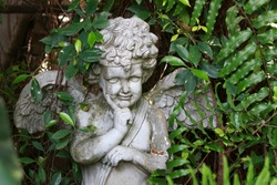 An boy angel statue with curly hair and cheeky pose with head resting on a hand. Garden ornament among ferns and green plants.