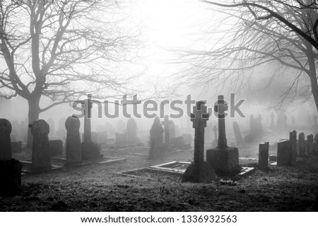 An eary mist covering an English grave yard with about fifty grave stones, the headstones in the foreground are in the shape of large Cristian crosses, two large winter trees