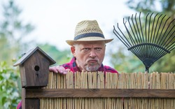 An elderly man with hat looks angry and watching over a garden fence. Concept problems with the neighborhood.