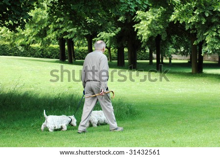 An elderly man with stick  and two dogs walks.