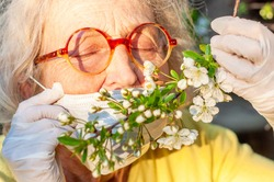 An elderly woman in a protective mask and medical gloves holds a branch of a blossoming cherry tree. Quarantine End. Health, precautions. Coronavirus covid19. Spring enjoyment. Closed eyes