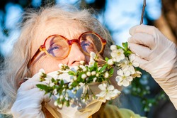 An elderly woman in a protective mask and medical gloves holds a branch of a blossoming pink peach tree. Quarantine, health, precautions. Coronavirus covid19. Spring enjoyment. Quarantine End