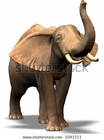 an elephant never forget