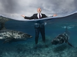 An emotional businessman staying in dangerous ocean water surrounded by sharks and screaming. Great white sharks underwater in shallow. Business suit in competitive conceptual image