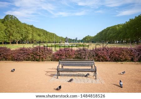 An empty bench in Jasne Blonia Kasprowicz Park in Szczecin, Poland. Zdjęcia stock ©