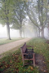 An empty bench stands in the fog in autumn