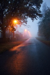 An empty illuminated country asphalt road through the trees and a small town in a fog on a rainy day, street lanterns close-up, red light. Road trip, transportation, communications, driving